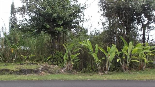 Silversword Dr, Pahoa, HI 96778 (MLS #612601) :: Aloha Kona Realty, Inc.