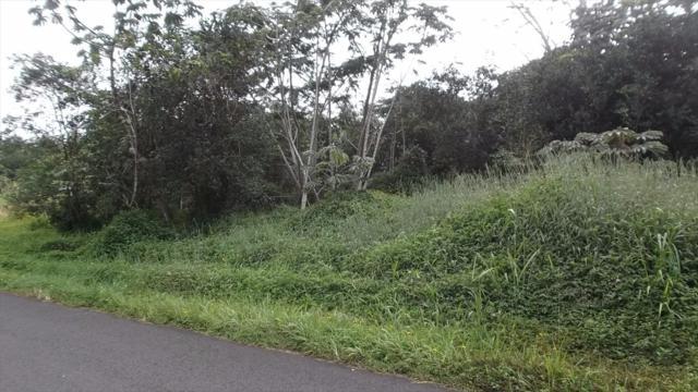 29TH AVE, Keaau, HI 96749 (MLS #612637) :: Aloha Kona Realty, Inc.