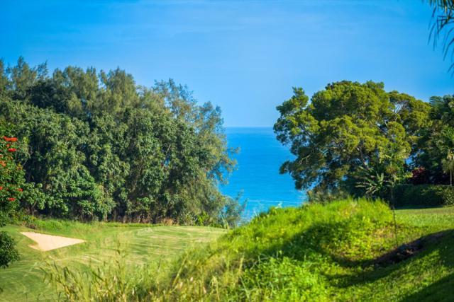 4024 Aloalii Dr, Princeville, HI 96722 (MLS #612662) :: Kauai Exclusive Realty