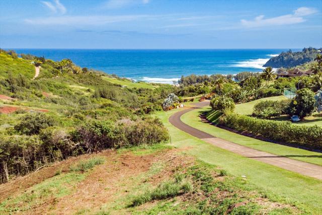 4033 Pali Moana Pl, Kilauea, HI 96754 (MLS #612971) :: Elite Pacific Properties