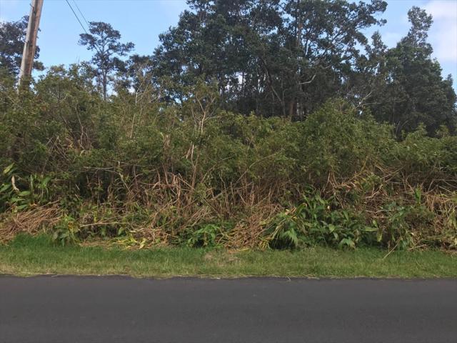 Wright Rd, Volcano, HI 96785 (MLS #613092) :: Aloha Kona Realty, Inc.