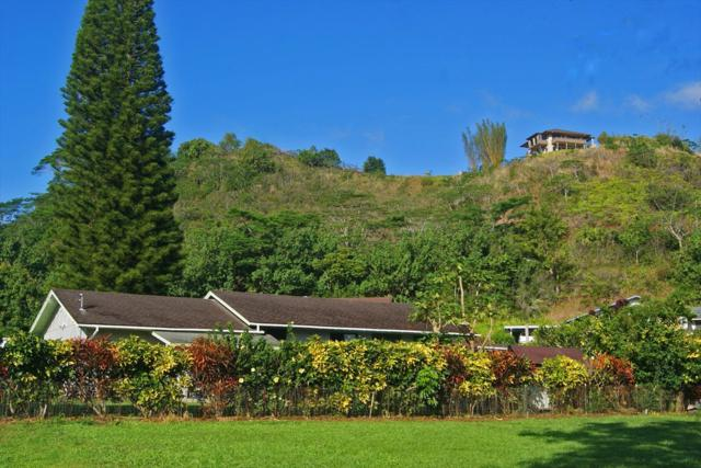 62 Aleo St, Kapaa, HI 96746 (MLS #613120) :: Kauai Exclusive Realty