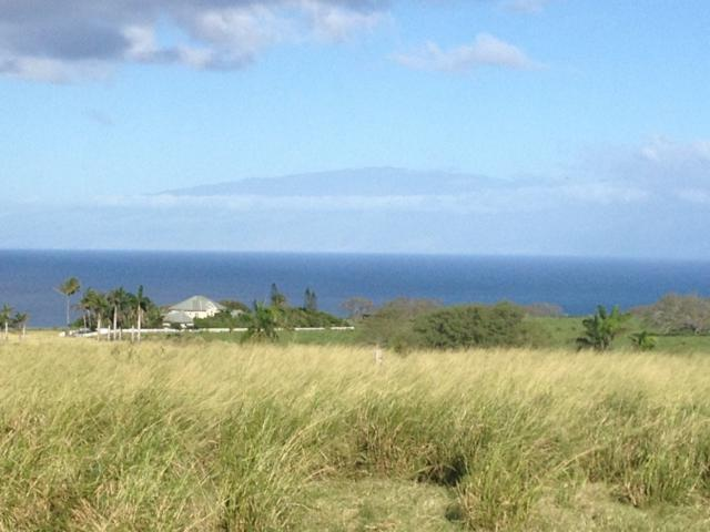 Puakea Dr, Hawi, HI 96719 (MLS #613166) :: Elite Pacific Properties