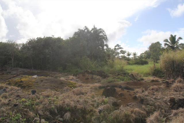 Address Not Published, Hilo, HI 96720 (MLS #613277) :: Aloha Kona Realty, Inc.