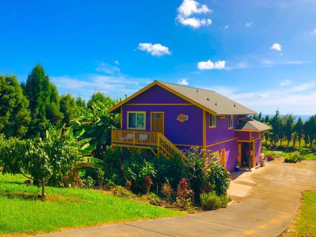 94-6527 Kamaoa Rd, Naalehu, HI 96772 (MLS #613307) :: Elite Pacific Properties