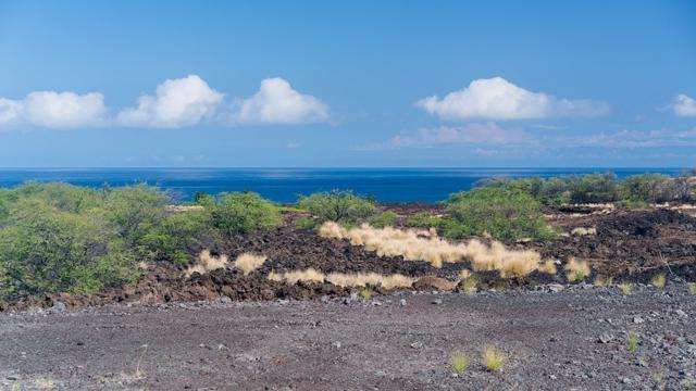 72-3130 Alapii Kula Dr, Kailua-Kona, HI 96740 (MLS #613363) :: Aloha Kona Realty, Inc.