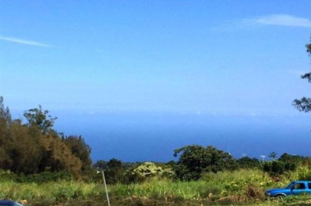 Lehua Street, Honokaa, HI 96727 (MLS #613371) :: Elite Pacific Properties