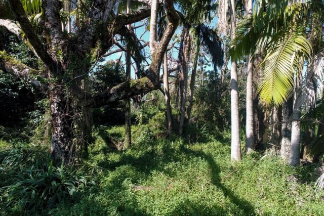 Ipuaiwaha St, Keaau, HI 96749 (MLS #613461) :: Aloha Kona Realty, Inc.