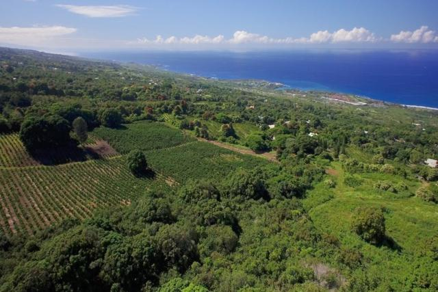 Address Not Published, Holualoa, HI 96725 (MLS #613824) :: Elite Pacific Properties