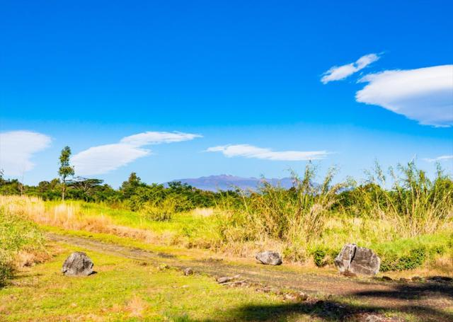 Address Not Published, Hilo, HI 96720 (MLS #613886) :: Aloha Kona Realty, Inc.