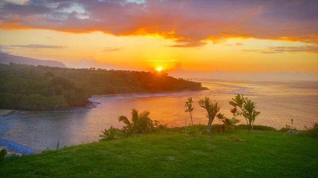 2991-B Kaohe Rd., Kilauea, HI 96754 (MLS #613983) :: Elite Pacific Properties