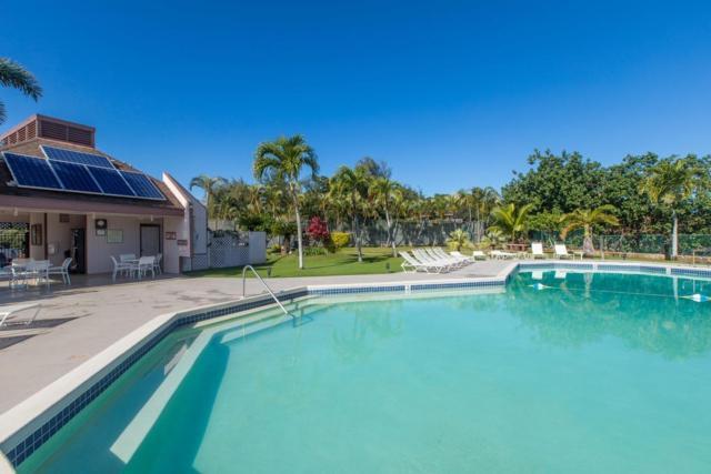 3411 Wilcox Rd, Lihue, HI 96766 (MLS #614002) :: Kauai Exclusive Realty