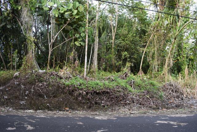 Puni Lani Lp, Pahoa, HI 96778 (MLS #614006) :: Aloha Kona Realty, Inc.