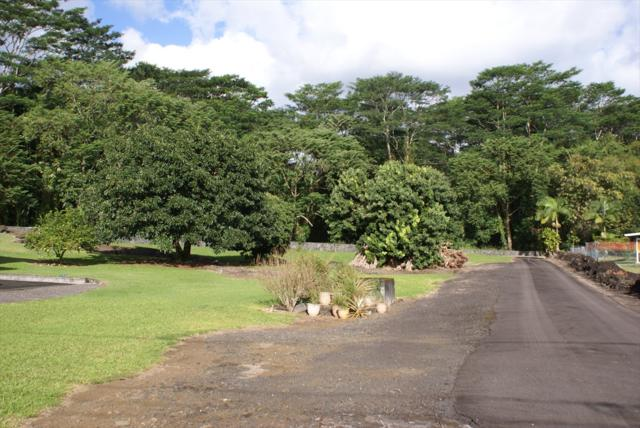 Address Not Published, Hilo, HI 96720 (MLS #614059) :: Aloha Kona Realty, Inc.
