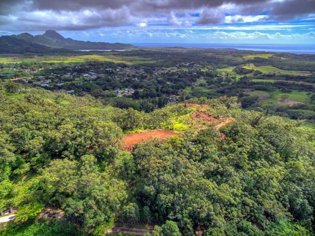 Uha Rd, Kalaheo, HI 96741 (MLS #614150) :: Kauai Exclusive Realty