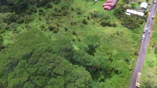 Kukui Camp Rd., Mountain View, HI 96771 (MLS #614386) :: Aloha Kona Realty, Inc.