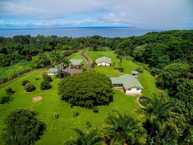 29-2089 Old Mamalahoa Hwy, Honomu, HI 96728 (MLS #614416) :: Elite Pacific Properties