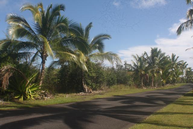 14-4817 S Kapoho Kai Dr, Pahoa, HI 96778 (MLS #614546) :: Aloha Kona Realty, Inc.