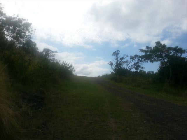 Address Not Published, Captain Cook, HI 96704 (MLS #614570) :: Elite Pacific Properties