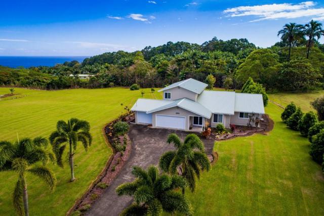 27-620 Kahalii Pl, Pepeekeo, HI 96783 (MLS #614594) :: Elite Pacific Properties