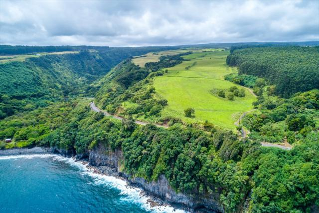 Maulua Nui Mauka, Papaaloa, HI 96780 (MLS #614651) :: Elite Pacific Properties