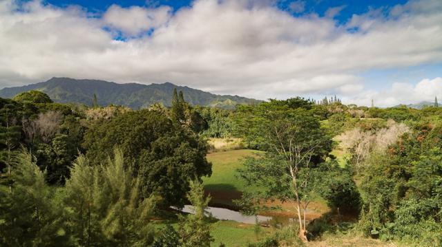 Olohena Road, Kapaa, HI 96746 (MLS #614751) :: Elite Pacific Properties