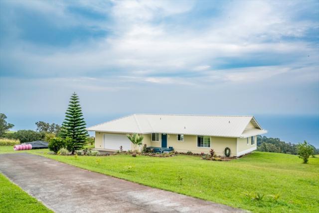 35-240 Papaaloa Rd, Laupahoehoe, HI 96764 (MLS #614829) :: Elite Pacific Properties