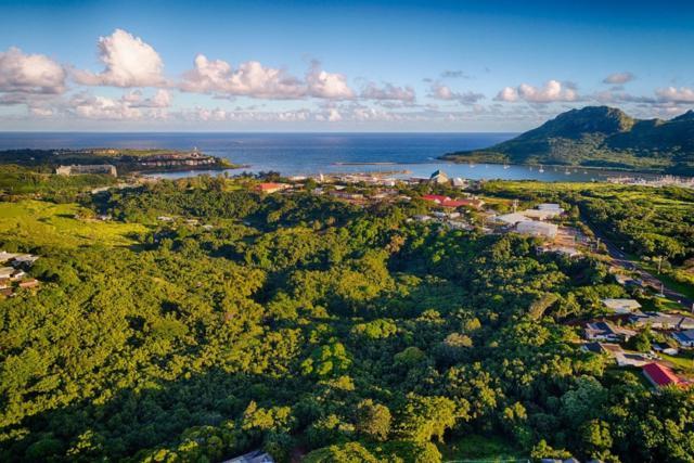 Kahumoku Rd, Lihue, HI 96766 (MLS #614857) :: Kauai Exclusive Realty