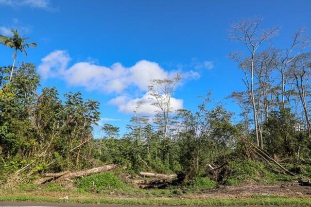 Pahoa-Kapoho Rd, Pahoa, HI 96778 (MLS #615009) :: Aloha Kona Realty, Inc.