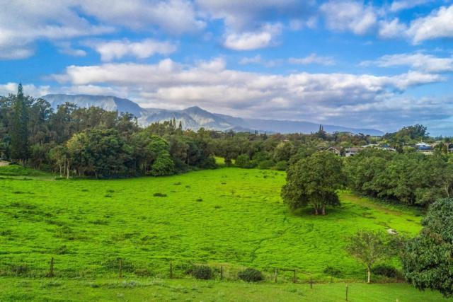 1980 Kolo Rd, Kilauea, HI 96754 (MLS #615092) :: Elite Pacific Properties