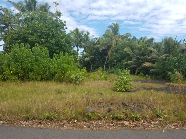 14-4957 Waiopae Rd, Pahoa, HI 96778 (MLS #615166) :: Elite Pacific Properties