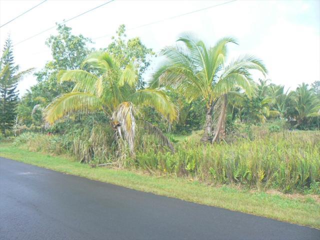Kehauopuna St, Pahoa, HI 96778 (MLS #615205) :: Aloha Kona Realty, Inc.