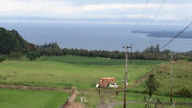 2114-D Kaiwiki Road, Hilo, HI 96720 (MLS #615291) :: Elite Pacific Properties