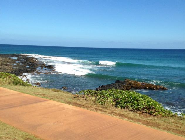 4585 Hauaala Rd, Kapaa, HI 96746 (MLS #615323) :: Kauai Exclusive Realty