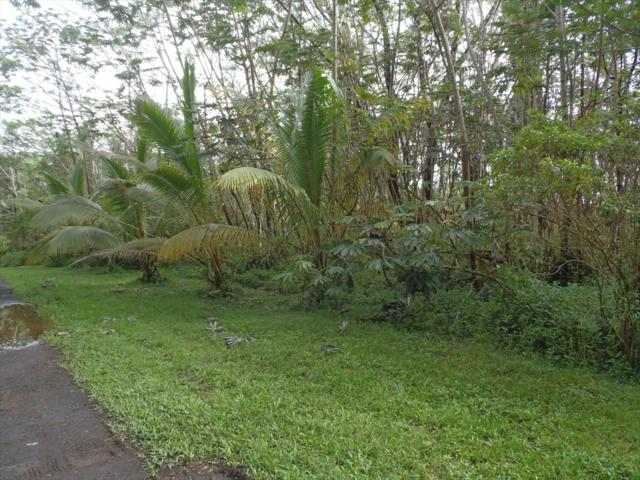 Address Not Published, Pahoa, HI 96778 (MLS #615412) :: Aloha Kona Realty, Inc.