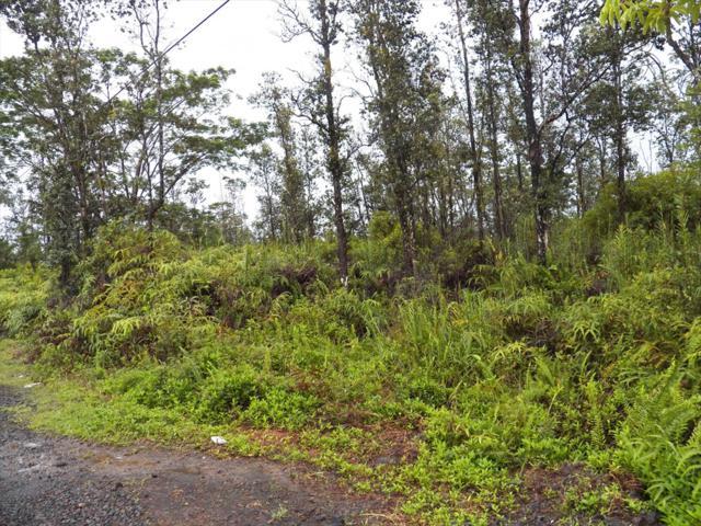 34TH AVE, Keaau, HI 96749 (MLS #615445) :: Aloha Kona Realty, Inc.
