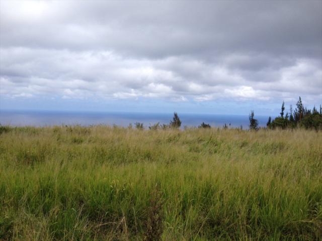 Paauhau St, Honokaa, HI 96727 (MLS #615513) :: Aloha Kona Realty, Inc.