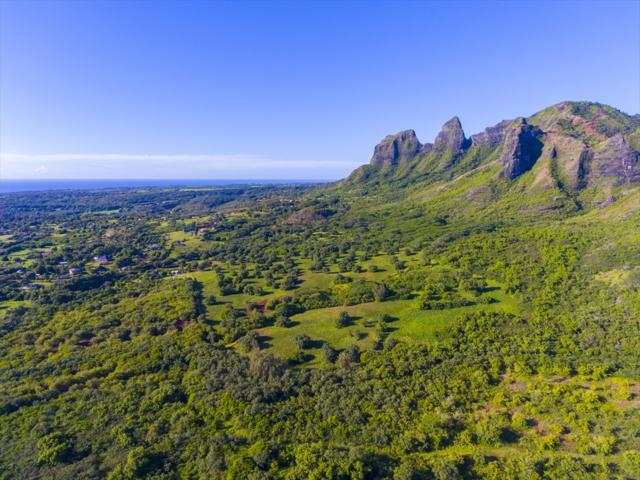 Hui Rd, Anahola, HI 96703 (MLS #615618) :: Kauai Real Estate Group