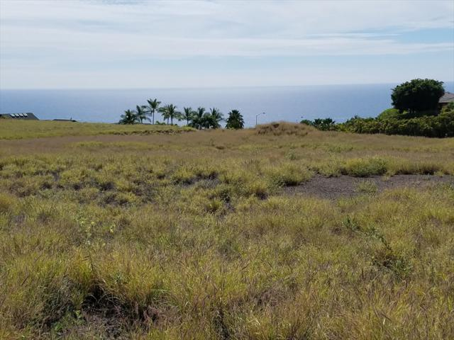 59-114 Honukai Place, Kamuela, HI 96743 (MLS #615664) :: Aloha Kona Realty, Inc.