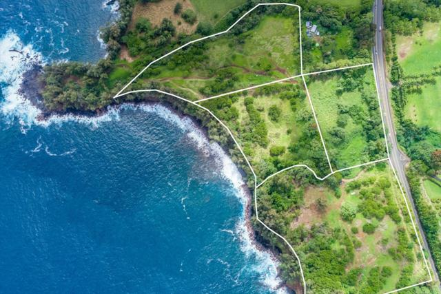 Address Not Published, Pepeekeo, HI 96783 (MLS #615741) :: Elite Pacific Properties
