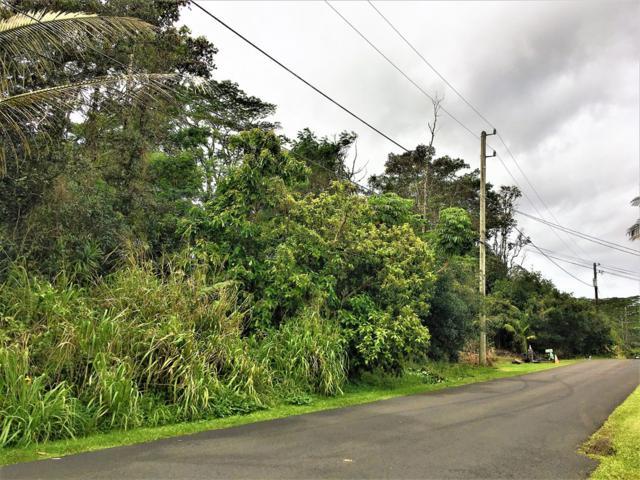 N Iau St, Pahoa, HI 96778 (MLS #615929) :: Elite Pacific Properties