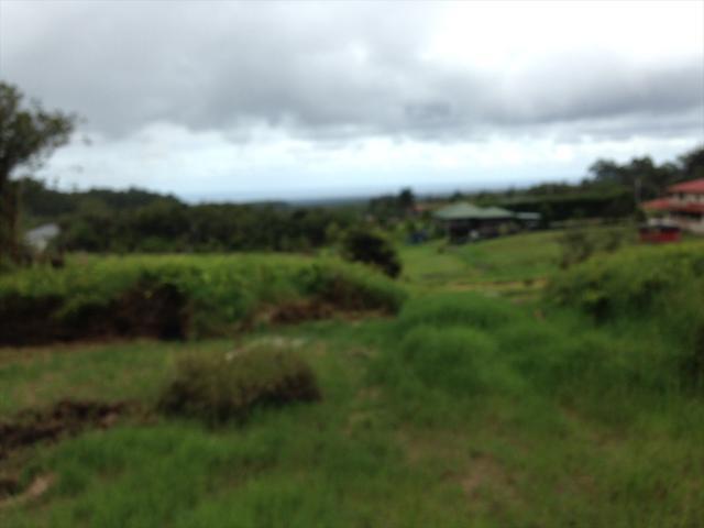 1020 Kulaloa Road, Hilo, HI 96720 (MLS #615952) :: Aloha Kona Realty, Inc.