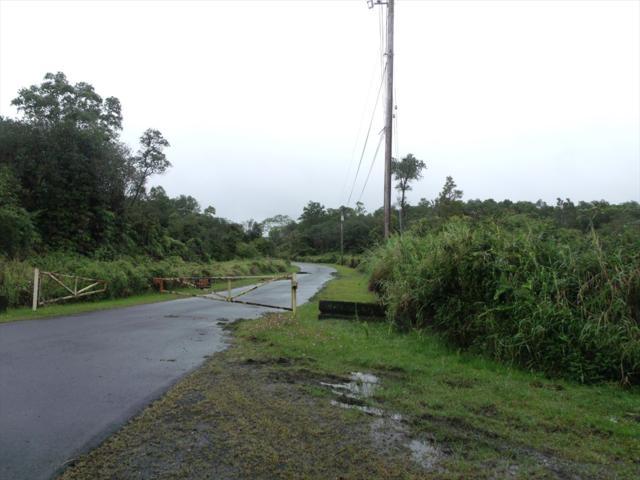Ihope Pl, Mountain View, HI 96771 (MLS #616041) :: Aloha Kona Realty, Inc.