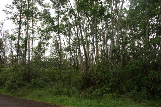 King Kamehameha Blvd, Kurtistown, HI 96760 (MLS #616129) :: Elite Pacific Properties