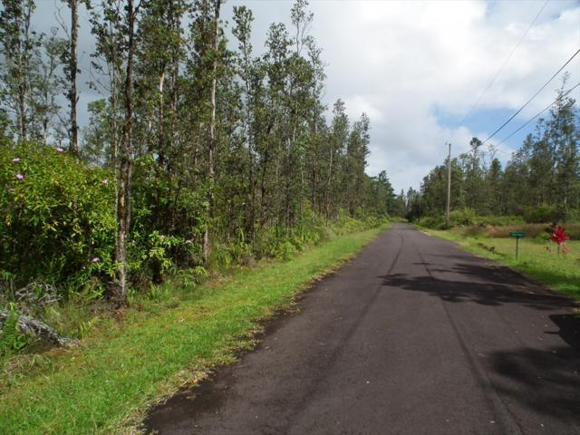 King Kamehameha Blvd, Kurtistown, HI 96760 (MLS #616199) :: Elite Pacific Properties