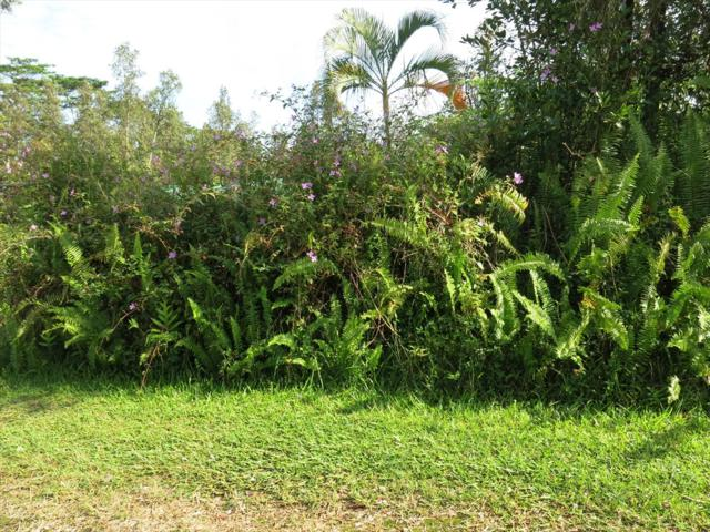 Kahoolawe Rd, Pahoa, HI 96778 (MLS #616218) :: Aloha Kona Realty, Inc.