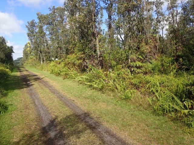Lanai Rd, Pahoa, HI 96778 (MLS #616242) :: Aloha Kona Realty, Inc.