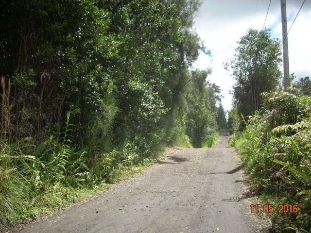 Road 3 (Hopue), Mountain View, HI 96771 (MLS #616287) :: Elite Pacific Properties