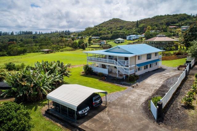 28-499 Kulaimano Rd, Pepeekeo, HI 96783 (MLS #616323) :: Aloha Kona Realty, Inc.
