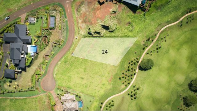 24 Ua Noe Place, Koloa, HI 96765 (MLS #616407) :: Kauai Exclusive Realty